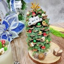孟澧花坊-毬果聖誕樹