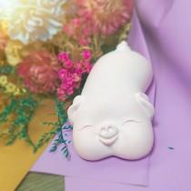 傢飾藝品-福氣粉豬擴香石